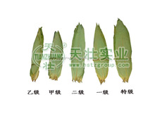 natural organic dry bamboo leaves