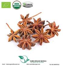 Organic hand select star anise / hight quality star aniseed