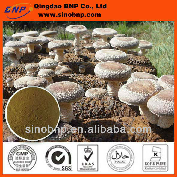 Manufacturer BNP Supply Natural Shiitake Mushroom (mycelium) Extract