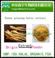 100% nature product Panax Ginseng Root Extract Powder / Ginsenoside 4% 30% 80% by HPLC / UV