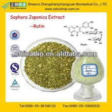 Experienced Factory Supply High Quality Sophora Japonica Extract Rutin Powder