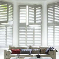 Vinyl Adjustable Louver Shutter