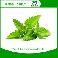 SR Mint Leaf Extract,Mentha Arvensis Extract/Catnip For Tea, High Quality Nepeta Cataria Extract