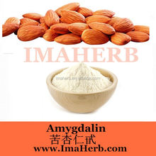 GMP Supply Best Sells almond nuts