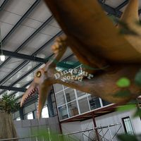 Entertainment Displays for Pet Toy Dinosaur Indoor Park