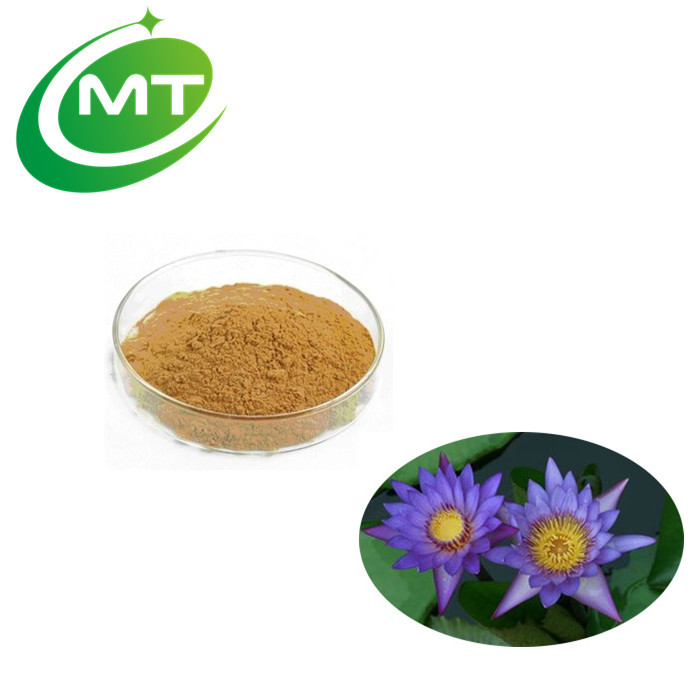 China manufacturer blue lotus extractdried blue lotus flower china manufacturer blue lotus extractdried blue lotus flower extractgmp blue lotus powder buy blue lotus extractblue lotus flower extractblue lotus mightylinksfo