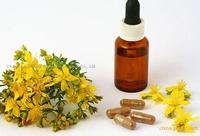 st. john's wort extract 10:1 test by uv anti depression