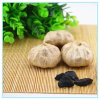 Fresh garlic specification white common garlic making black garlic