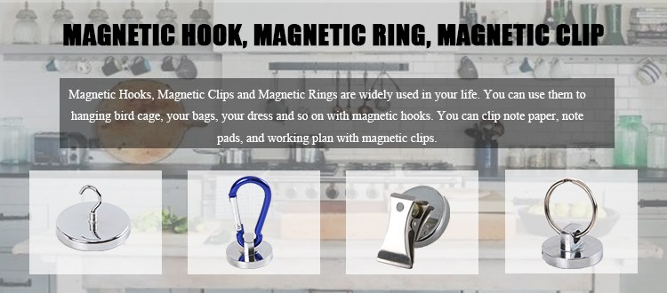 wholesale Dailymag Strong Silver 35LBS Magnetic heavy duty neodymium Carabiner Hook for door ceiling