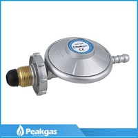 Hot Selling Good Quality Zinc alloy shell gas pipe and regulator