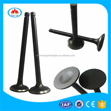 Huge auto market spare parts engine valve for Hyundai Santro Xing India