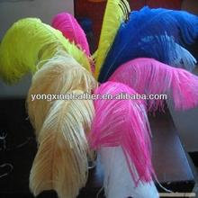 60-65cm ostrich plume for decoration