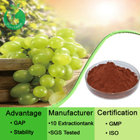 Hot sale grape opc 95 grape seed extract polyphenol