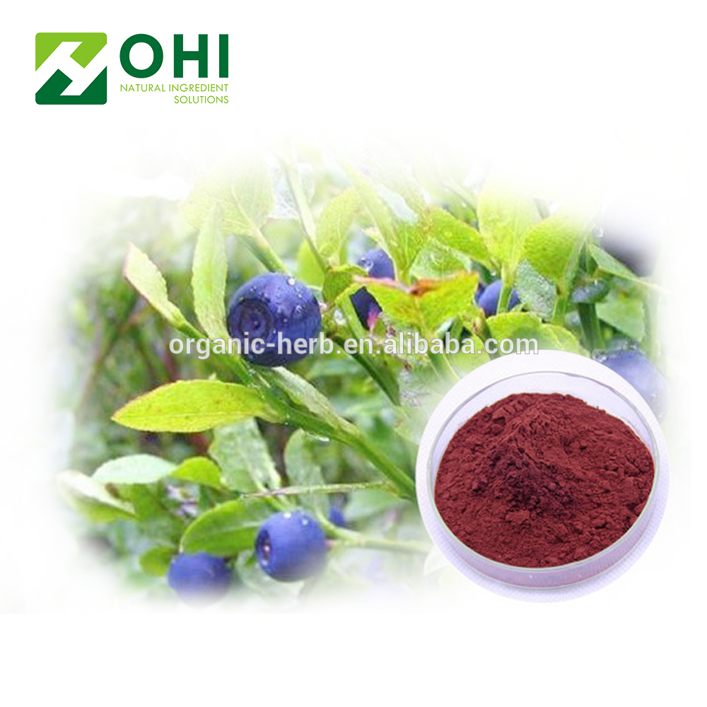 Bilberry Extract Anthocyanins Anthocyanosides Vaccinium myrtillus L 100% European original raw material