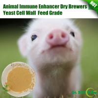 Animal Immune Enhancer Dry Brewers Yeast Cell Wall Feed Grade