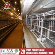 High quality chicken cage for Poultry Farm Layer Chicken Cage equipment