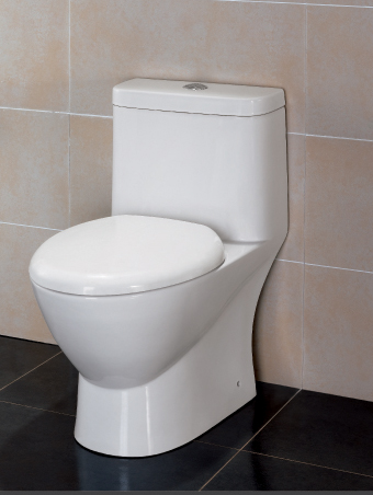 Sanitary Ware Ceramic One-piece Toilet (TB346M/L)