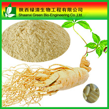 High purity Leares&stem ginseng extract Ginsenosides 80% by UV