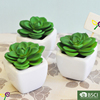 mini artificial succulent plants for home decorating