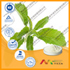 The Best Steviol Glycoside Concentrate