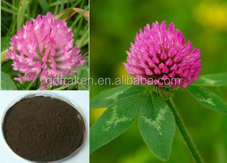 100% Natural Isoflavones 40% Red Clover Extract