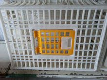 Plastic poultry chicken transport cage