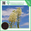 TOP quality natural black cohosh extract powder CAS NO. 1449-05-4Triterpene 2.5% low price
