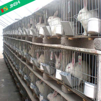 poultry cage of rabbit