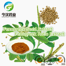pure natural plant extracts common fenugreek seed p.e supplier in China testosterone powder