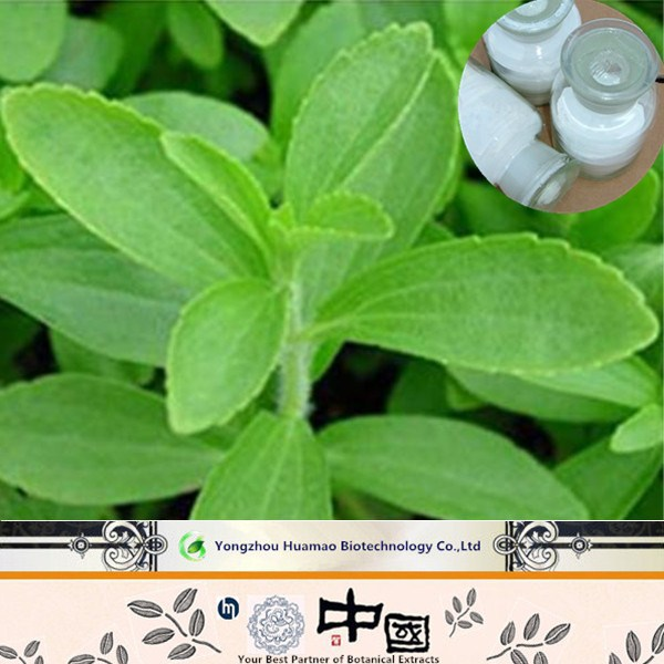organic stevia water extraction/stevia extraction plant
