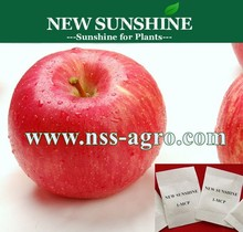 Top quality 1-Methylcyclopropene (1-MCP) fruits antistaling agent
