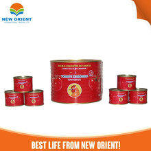 famous Branded Wholesale Tomato Paste/Ketchup Chinese Manfacturer