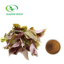 Wholesale Price Best Quality Dried Perilla Leaf Powder