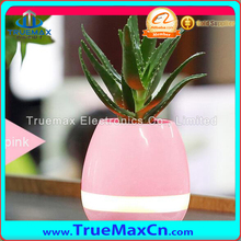 Wholesale Alibaba Smart Music Flower Pot, Play Piano On A Real Plant, LED Colorful Night Light Touch Music Plant Lamp