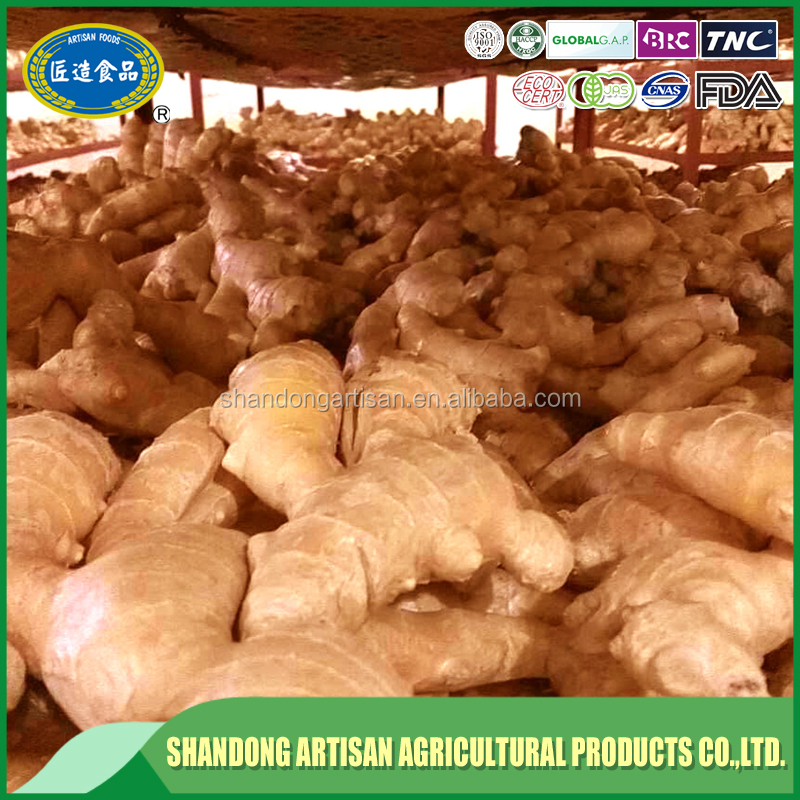 Best selling products high quality air dry ginger specifications competitive price