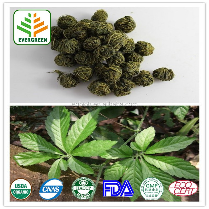Pure Natural Gynostemma Herb Extract/Gynostemma plant extract/gynostemma extract powder