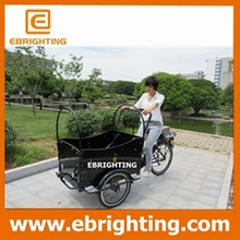 3 wheeler cargo bike with rain cover for children with great price