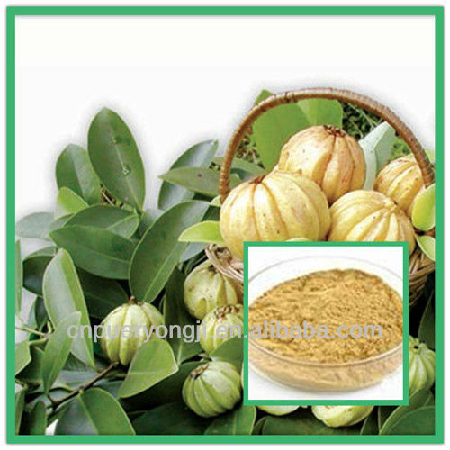 100% Natural Garcinia Cambogia Extract Super Fat Burning Capsule