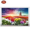Flower Field with Windmill Lighted Canvas Prints