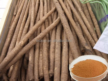 Manufacturer high quality hot sell burdock root p.e. burdock root extract