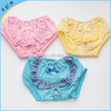 2016 Pet Clothes Teddy Menstrual Pants Dog Health Pants Panty Diaper Female Dog Physiological Pants