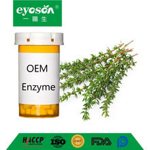 Eyoson OEM Enzyme Natural ferment English Thyme tablet antibacterial acne-fighting