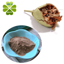 Antioxidant Product 100% Pure Natural baobab extract powder
