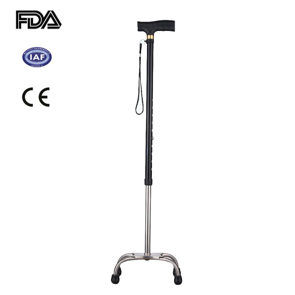 Rehabilitation Therapy Supplies Properties and Vision Care Type low vision and blind cane
