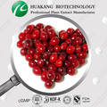 High quality Freeze Dried Cranberry Powder