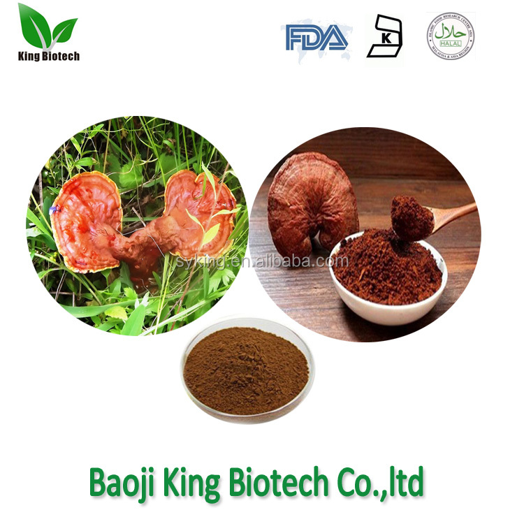 ganoderma lucidum spore powder reishi mushroom extract triterpen