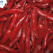 New Crop Sinocharm IQF Jinta Chili Hot Chilli Frozen