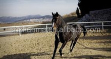 Fence Manufacture Horse Products and Horse Running Rail