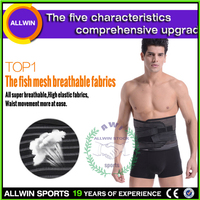 amazing! fathers day gift-Professional healthcare lumbar support brace/lower back brace Double Pull ALLWIN-Y010
