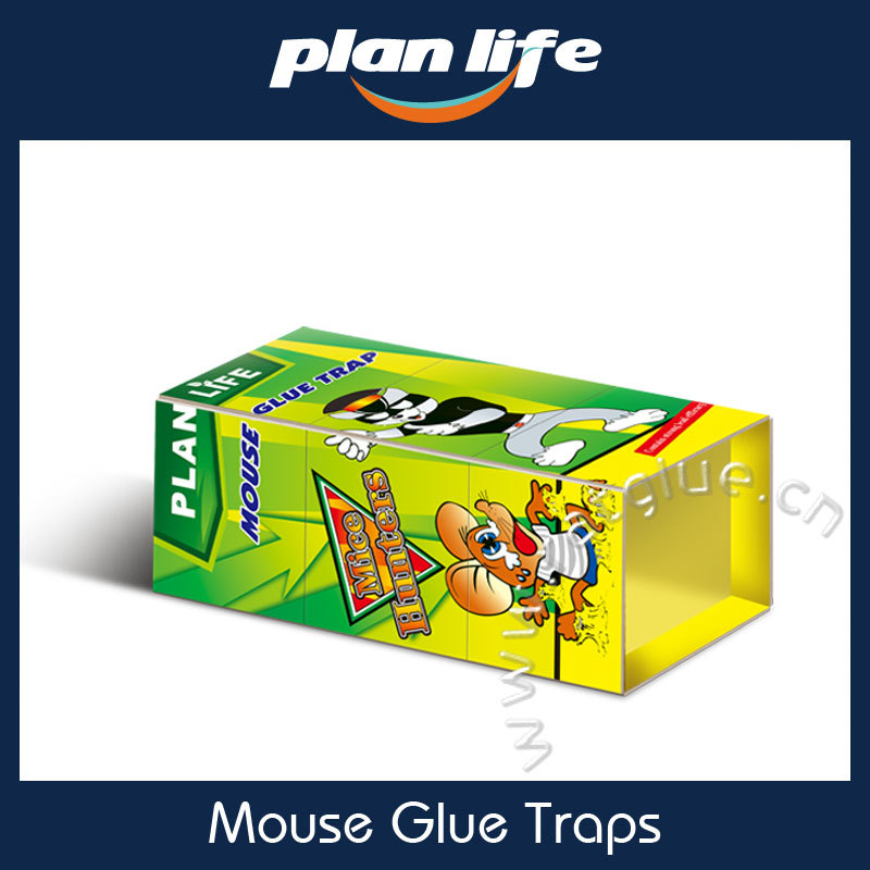 China Safety Products Hot Melt Adhesive Mouse Glue Trap For Kill Rats